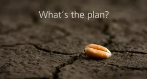 Whats-the-plan